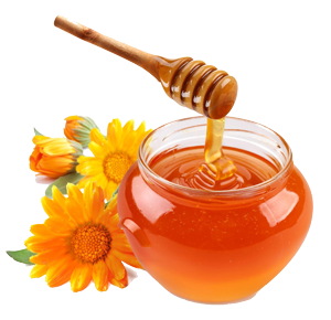 honey-flowers-238044